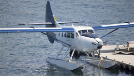 Seaplane at a dock