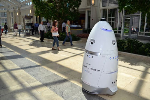 Security Robot on patrol